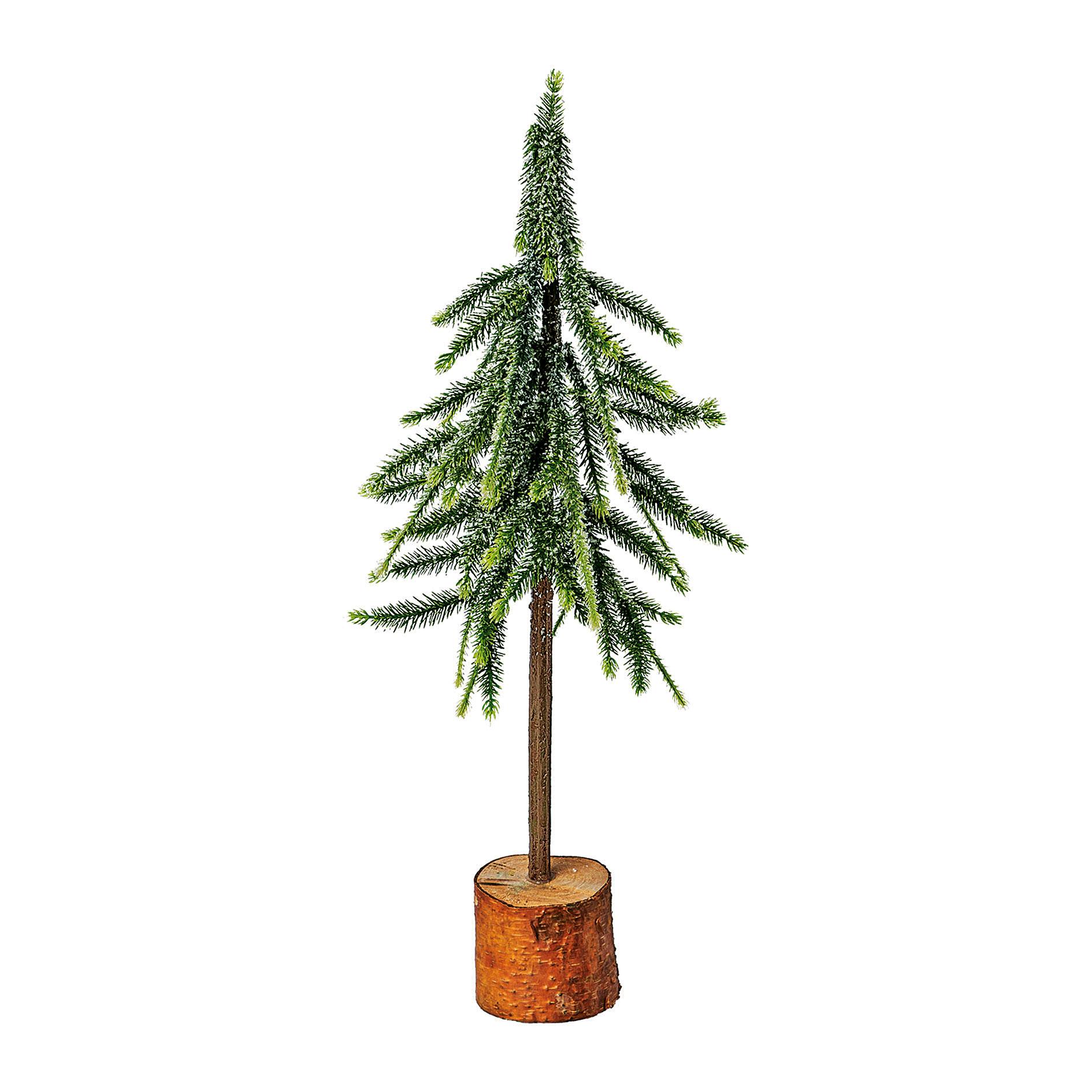 Fichtenbaum 50cm